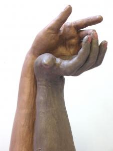 C Koesterende handen